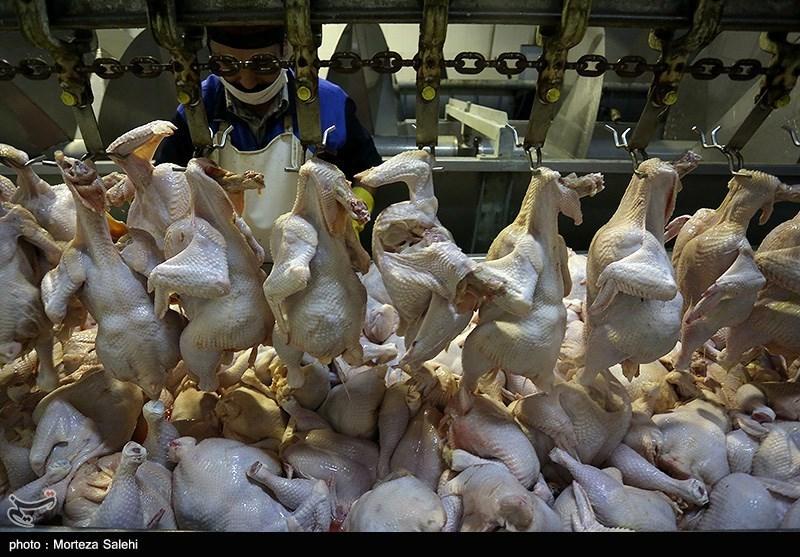 یک واحد مرغ فروشی در همدان به تعزیرات حکومتی استان معرفی گردید.